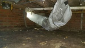 water-damage-restoration-of-subfloor